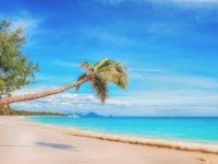 Cercasi grafico pubblicitario ai Caraibi