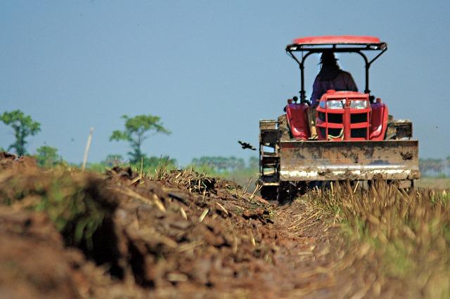Lavorare nelle farm (fattorie) in Australia