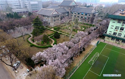 Scuola di italiano a Shandong