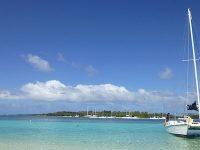 Si assume cuoco a Mauritius (con vitto ed alloggio)