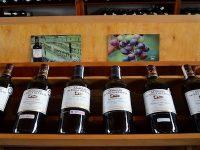 Import/Export di vini italiani assume personale in Colombia