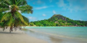 Si assume Italian Guest Assistant alle Seychelles