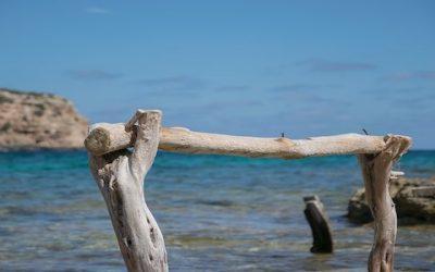 Cercasi cuochi a Formentera con vitto ed alloggio inclusi