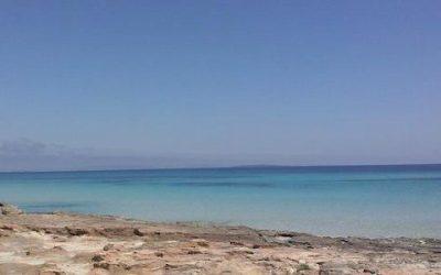Negozio d'abbigliamento assume personale a Formentera