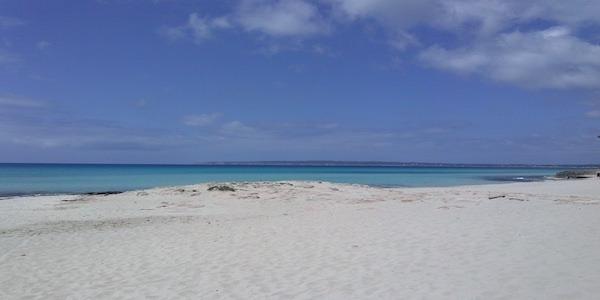 Si assume personale a Formentera per l'estate 2019 (con alloggio)
