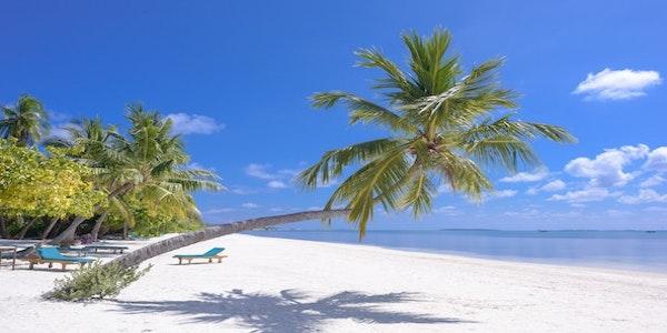 Vendesi ristorante e pizzeria ai Caraibi
