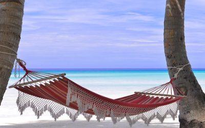Lavori da Sogno: Si assume un libraio alle Maldive