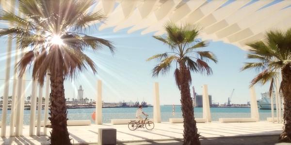 Vendesi bar e pizzeria a Malaga