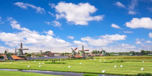 Offerta di lavoro per trader italiani in Olanda