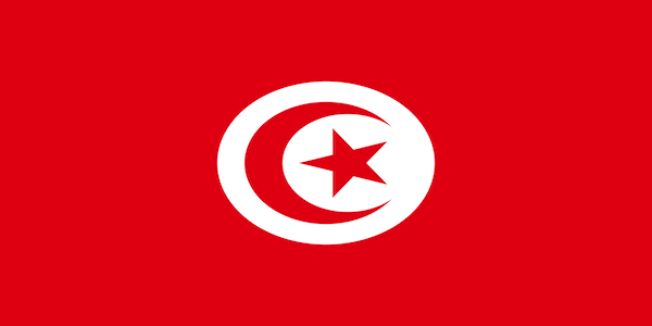 Offerta di lavoro per italiani in Tunisia (con contratto a tempo indeterminato)