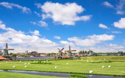 Giovane azienda assume italiani in Olanda