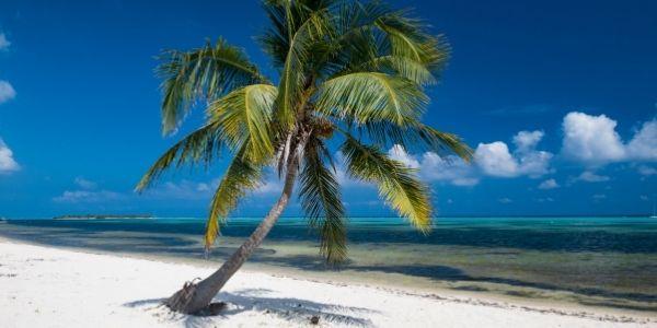 Ristorante alle Isole Cayman assume personale